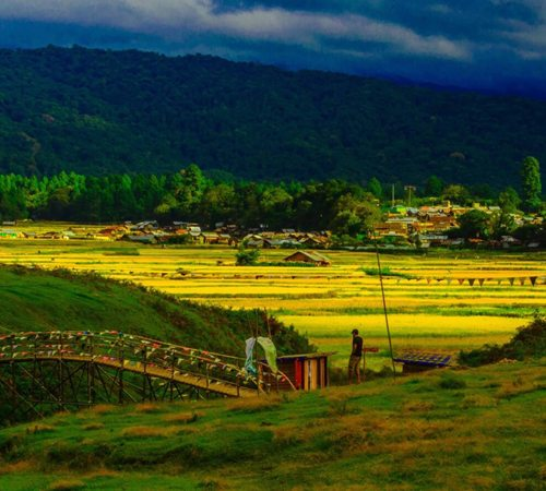 Ziro-Talley Valley Trek